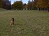 training_mit_der_beisswurst_1_20120418_1507670343