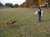 training_mit_der_beisswurst_5_20120418_1881951938