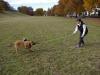 training_mit_der_beisswurst_6_20120418_1784348919