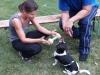 Training mit Flocke, Grace und Thommy